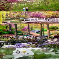 edith-j-carrier-arboretum-at-james-madison-university-gardens--arboretums-in-va