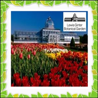 lewis-ginter-botanical-garden_gardens_arboretumes_in_va