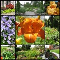 state-arboretum-of-virginia-museum-gardens--arboretums-in-va