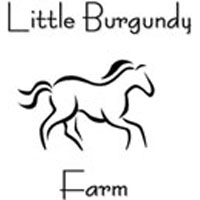 Little Burgundy Farm Stables Horseback Riding in Virginia
