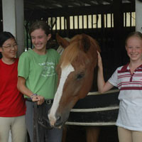 Twin Oaks Riding Academy Horseback Riding in Virginia