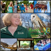 Busch_Gardens-Gardens_Arboretums_in_VA-VA