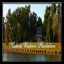 westover-plantation-gardens--arboretums-in-va
