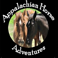 Appalachian Horse Horseback Riding in Virginia
