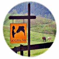 Groovespring Farm Horseback Riding in Virginia