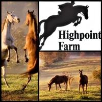 Highpoint Farm Horseback Riding in Virginia