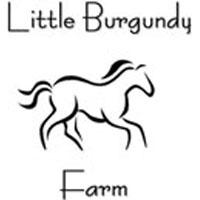 Little Burgundy Farm Stables Horseback Riding in Virginia